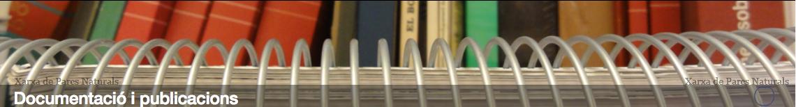 Documentació i publicació